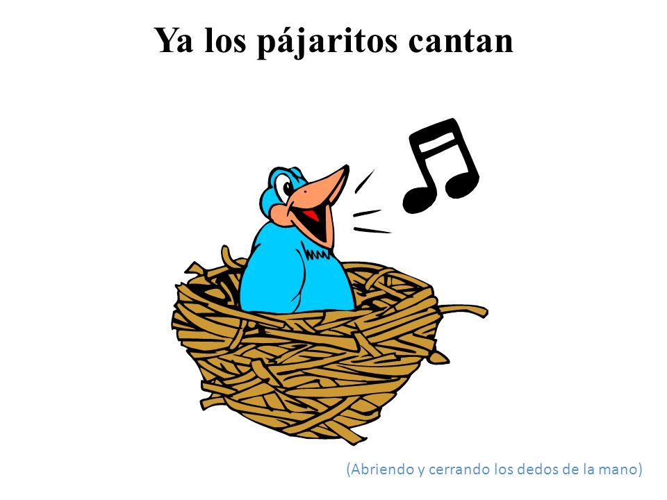 Ya los pájaritos cantan