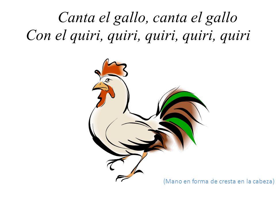 Canta el gallo, canta el gallo Con el quiri, quiri, quiri, quiri, quiri
