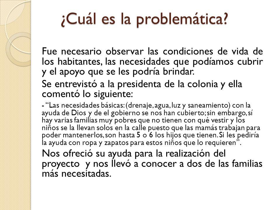 ¿Cuál es la problemática