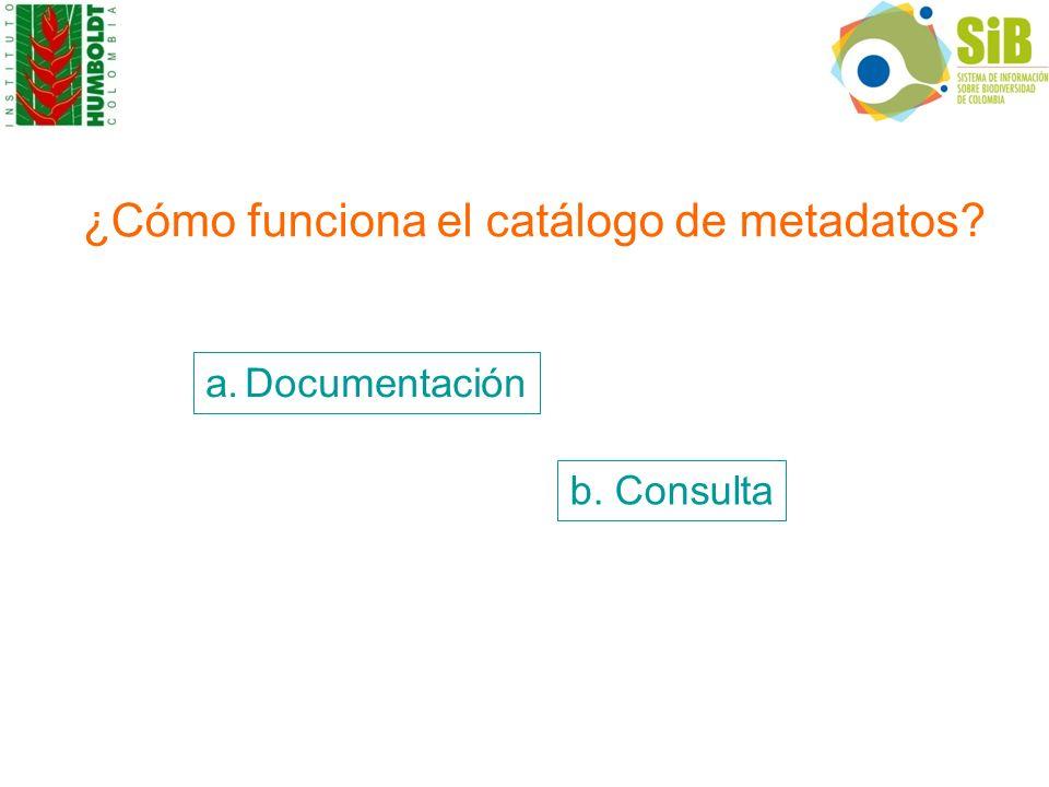 ¿Cómo funciona el catálogo de metadatos