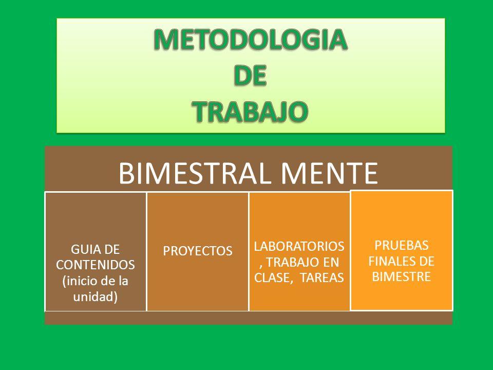 BIMESTRAL MENTE METODOLOGIA DE TRABAJO