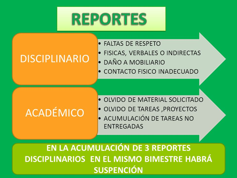 REPORTES DISCIPLINARIO ACADÉMICO