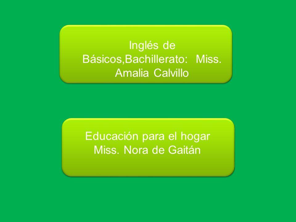 Inglés de Básicos,Bachillerato: Miss. Amalia Calvillo