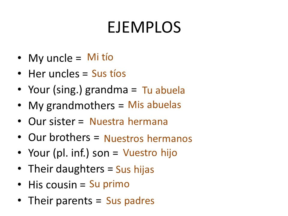 EJEMPLOS My uncle = Her uncles = Your (sing.) grandma =