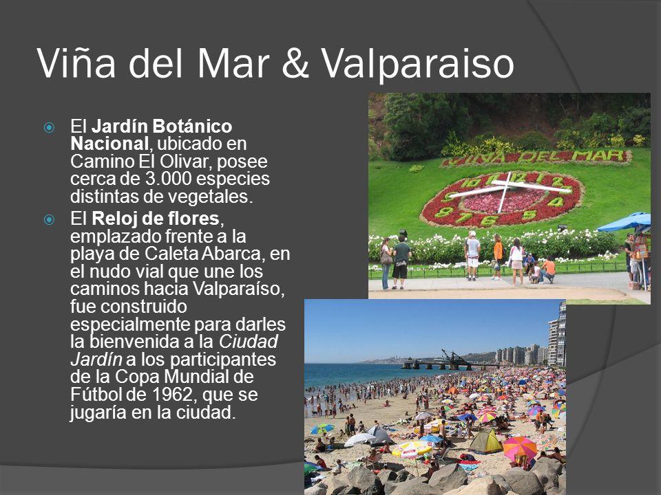 Viña del Mar & Valparaiso