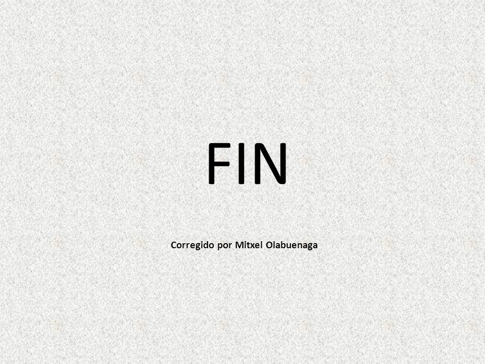 FIN Corregido por Mitxel Olabuenaga