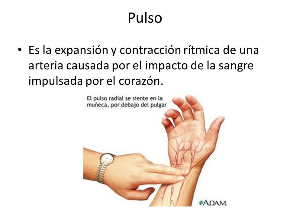 Pulso Es la expansión y contracción rítmica de una arteria causada por el impacto de la sangre impulsada por el corazón.
