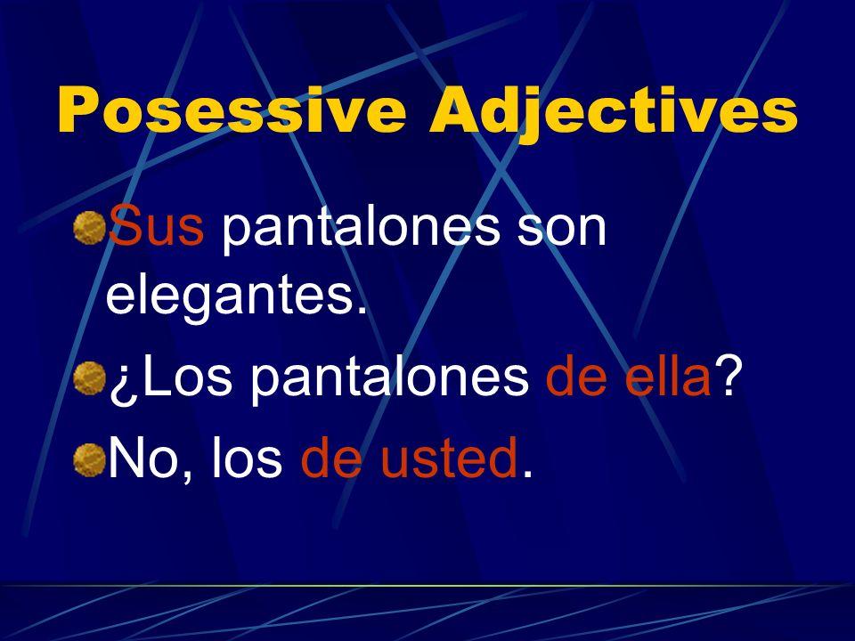 Posessive Adjectives Sus pantalones son elegantes.