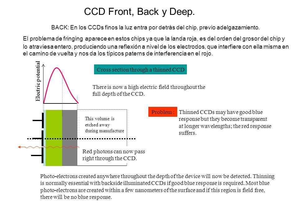 CCD Front, Back y Deep. BACK: En los CCDs finos la luz entra por detrás del chip, previo adelgazamiento.