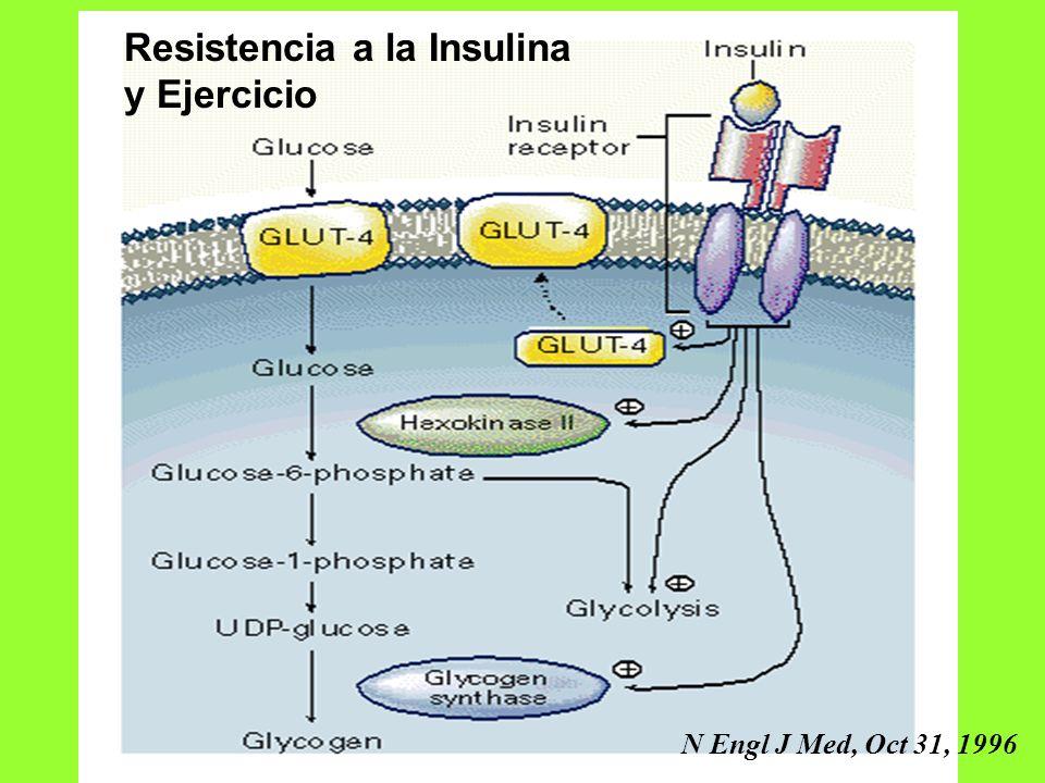 Resistencia a la Insulina y Ejercicio