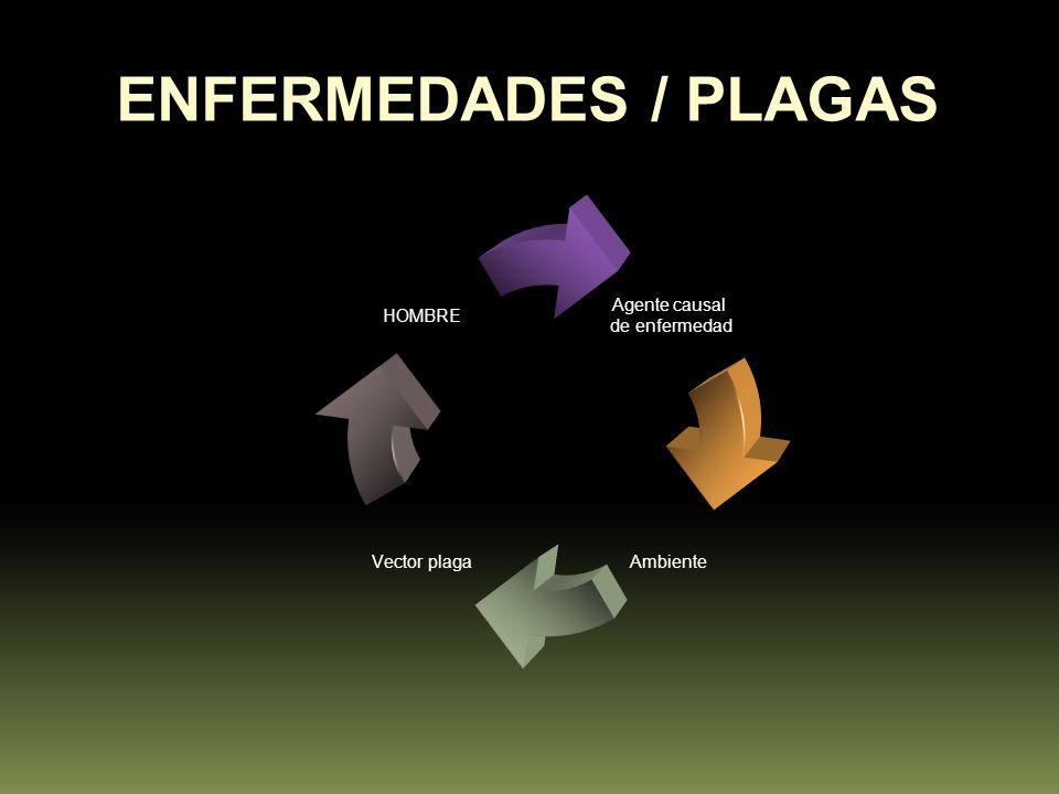 ENFERMEDADES / PLAGAS