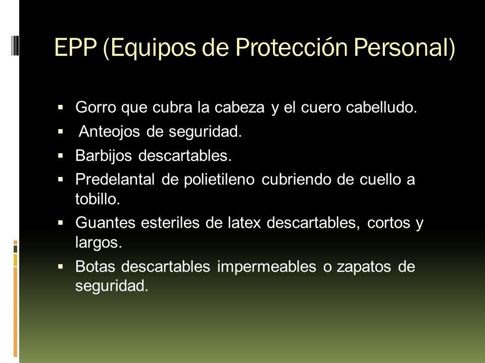 EPP (Equipos de Protección Personal)