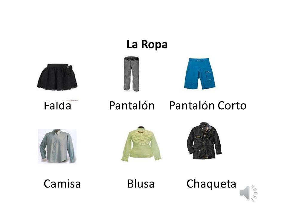 Falda Pantalón Pantalón Corto