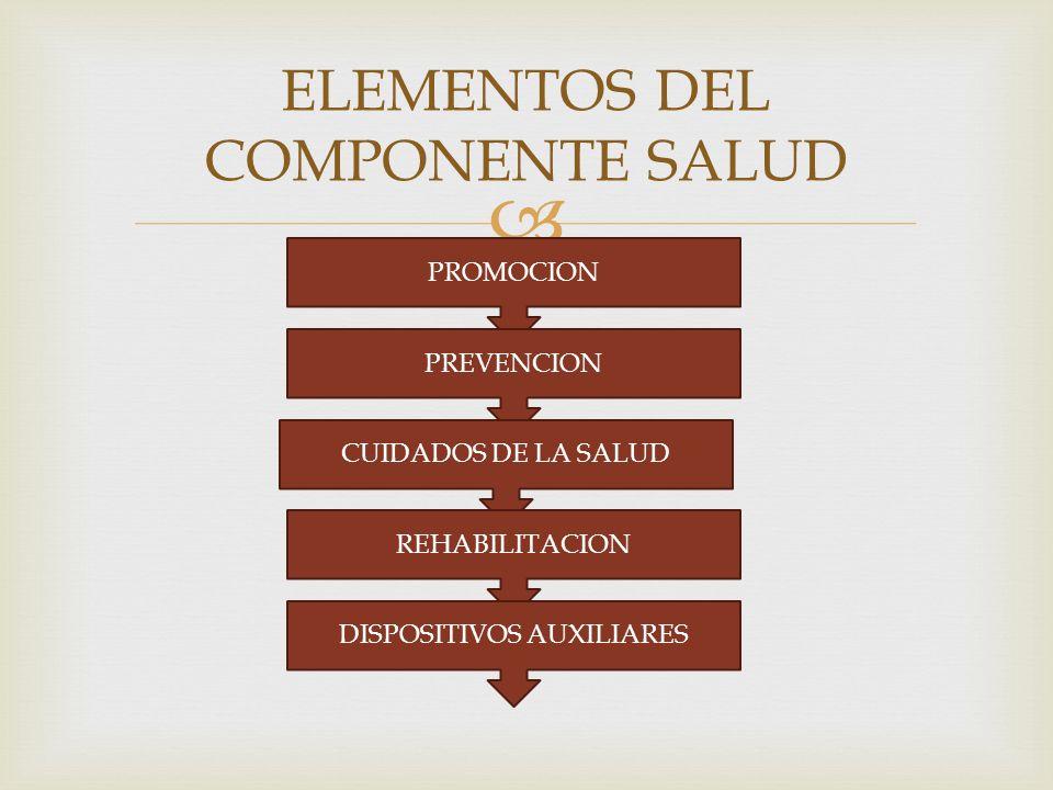 ELEMENTOS DEL COMPONENTE SALUD