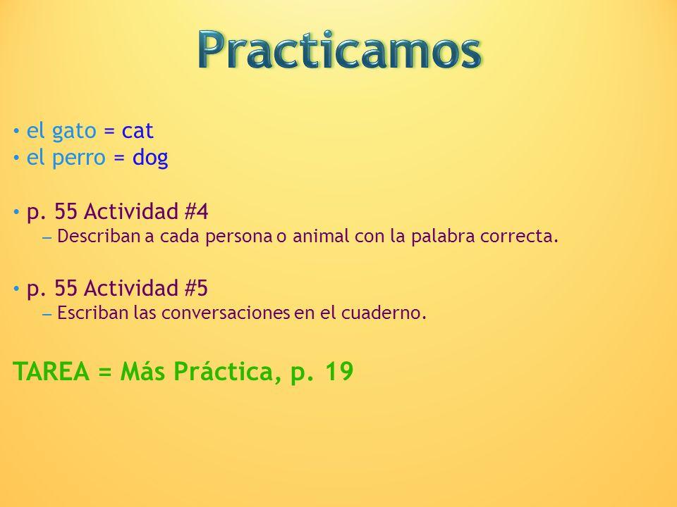 Practicamos TAREA = Más Práctica, p. 19 el gato = cat el perro = dog