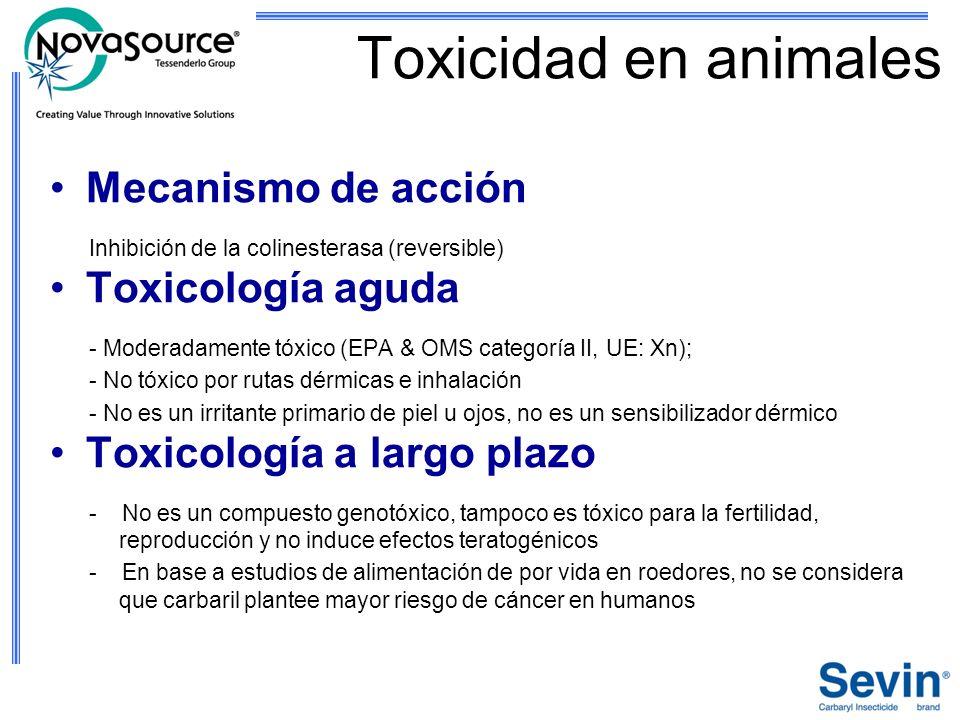 Toxicidad en animales Mecanismo de acción Toxicología aguda