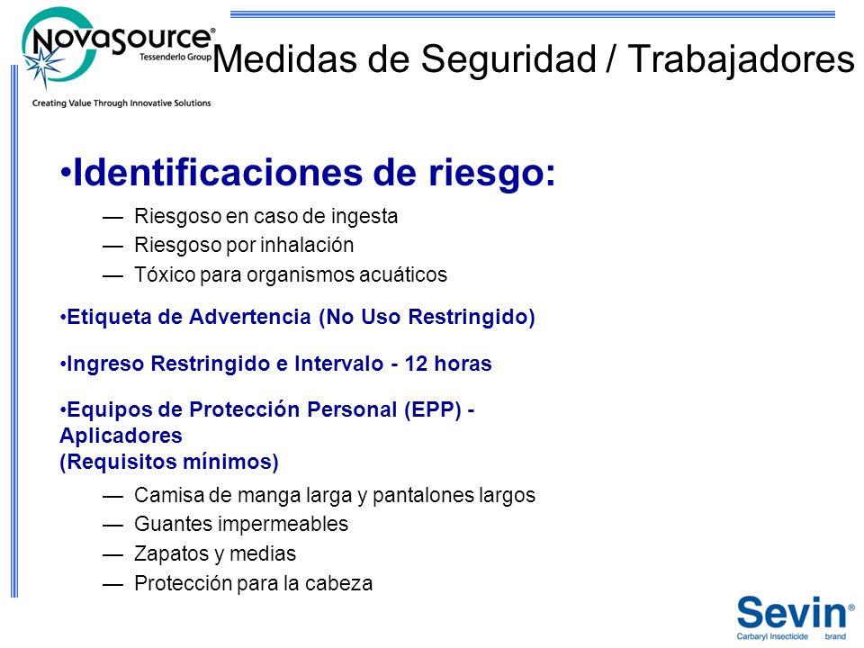 Medidas de Seguridad / Trabajadores