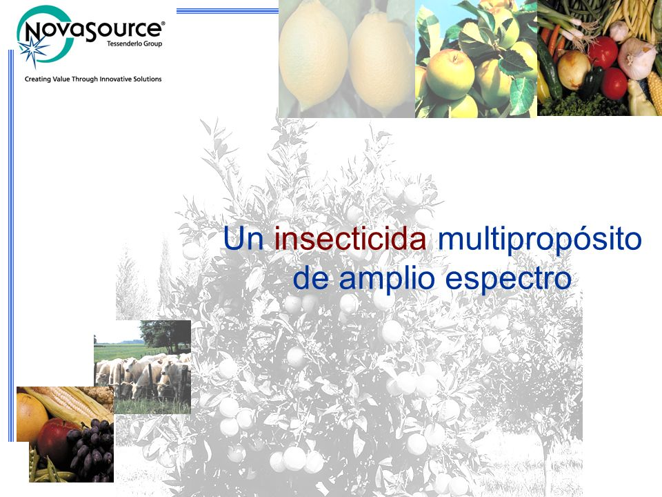 Un insecticida multipropósito de amplio espectro