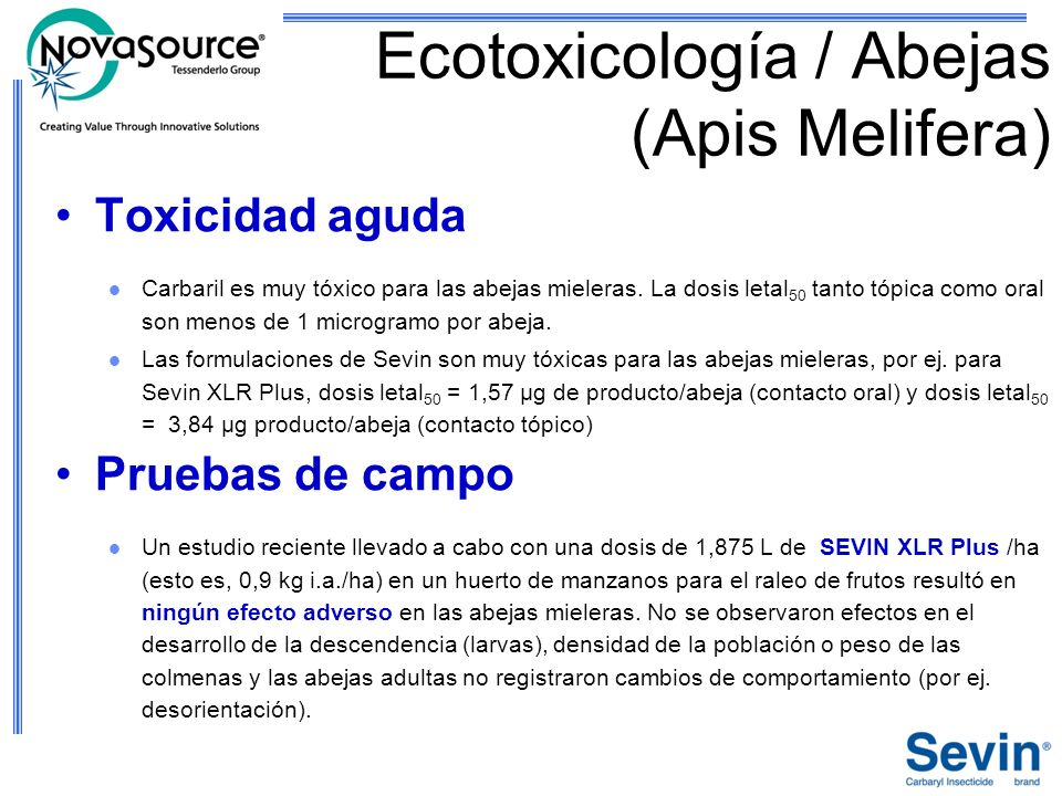 Ecotoxicología / Abejas (Apis Melifera)