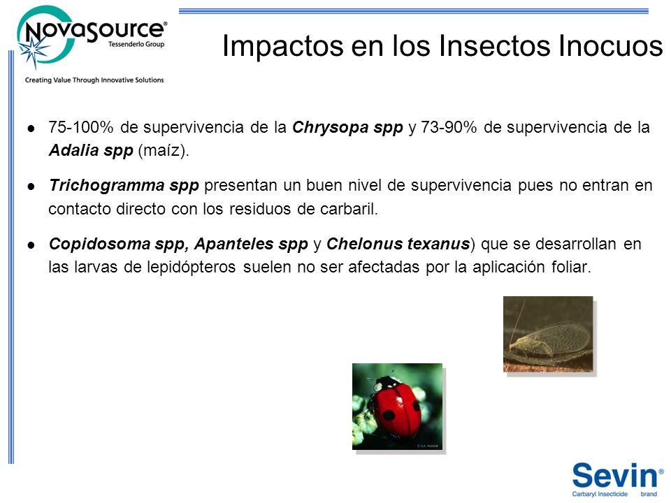 Impactos en los Insectos Inocuos