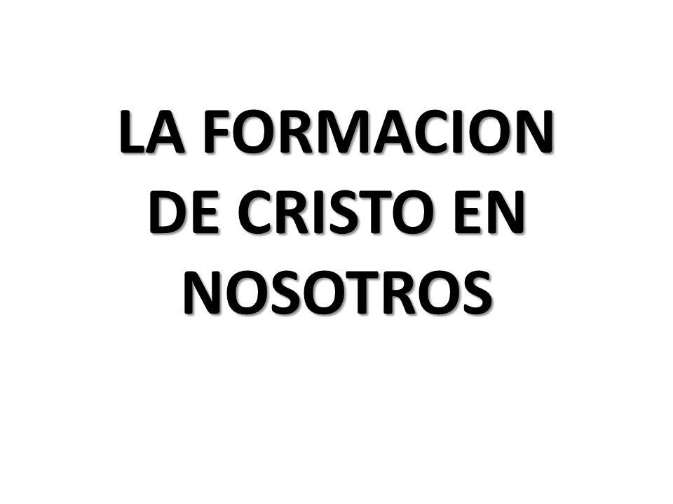 LA FORMACION DE CRISTO EN NOSOTROS