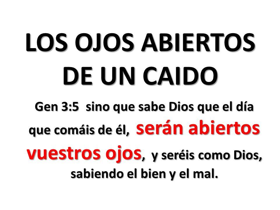 LOS OJOS ABIERTOS DE UN CAIDO