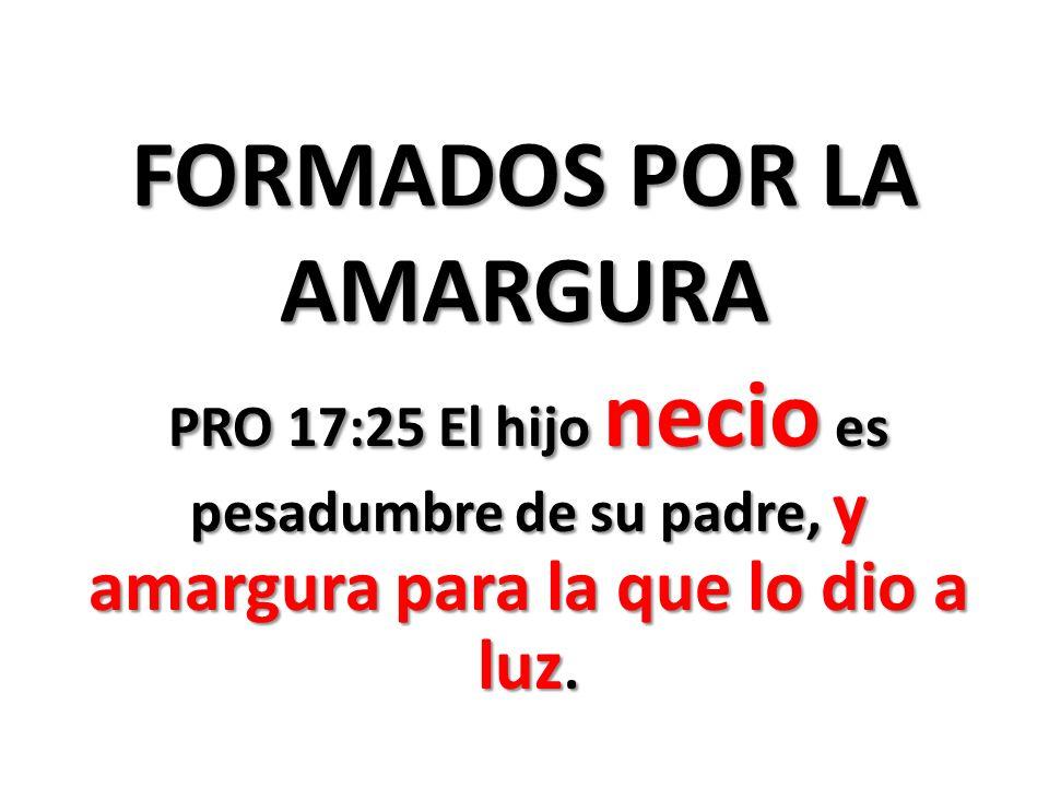 FORMADOS POR LA AMARGURA