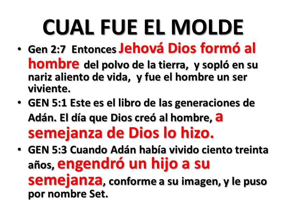 CUAL FUE EL MOLDE