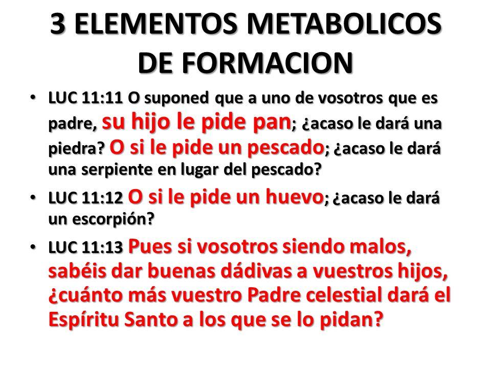 3 ELEMENTOS METABOLICOS DE FORMACION