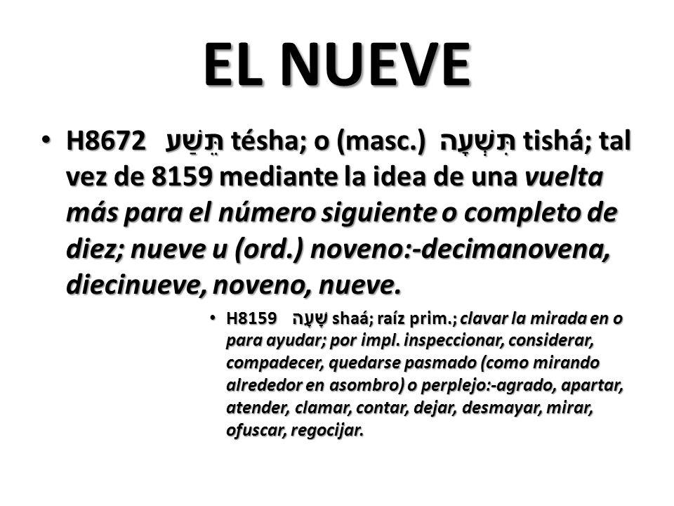EL NUEVE