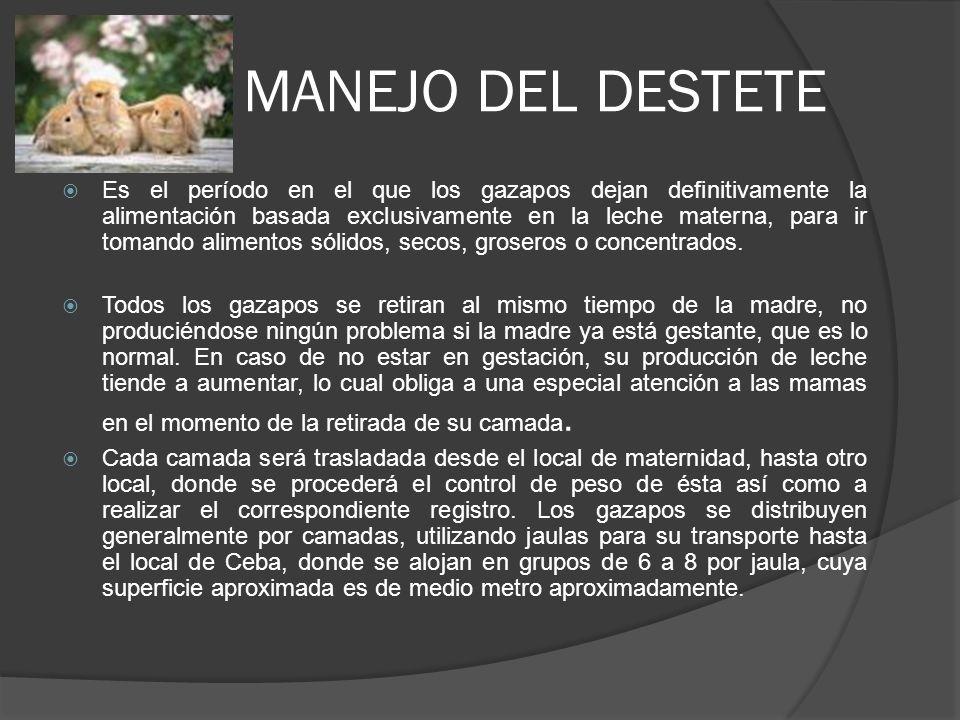MANEJO DEL DESTETE