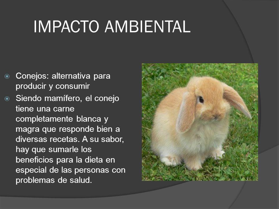 IMPACTO AMBIENTAL Conejos: alternativa para producir y consumir