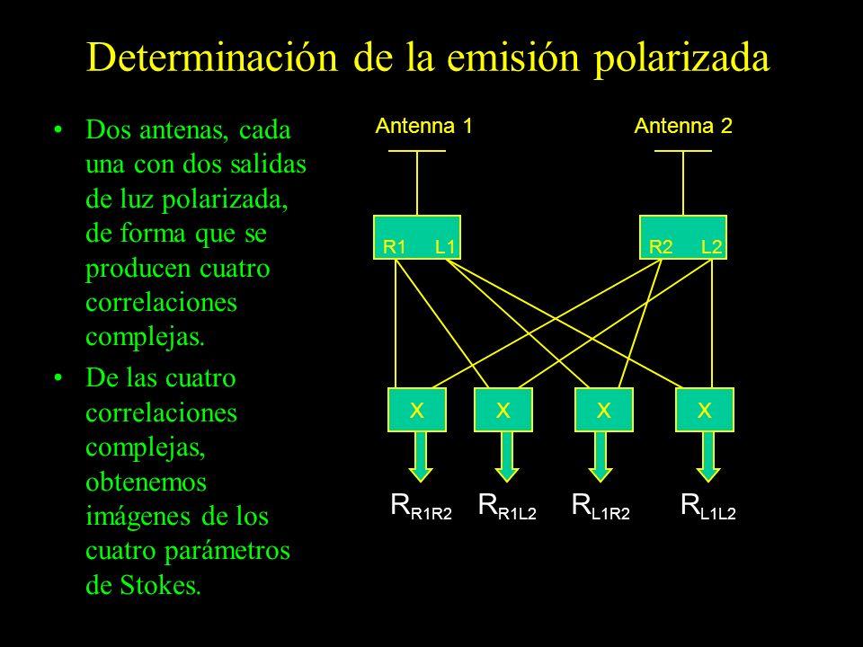 Determinación de la emisión polarizada