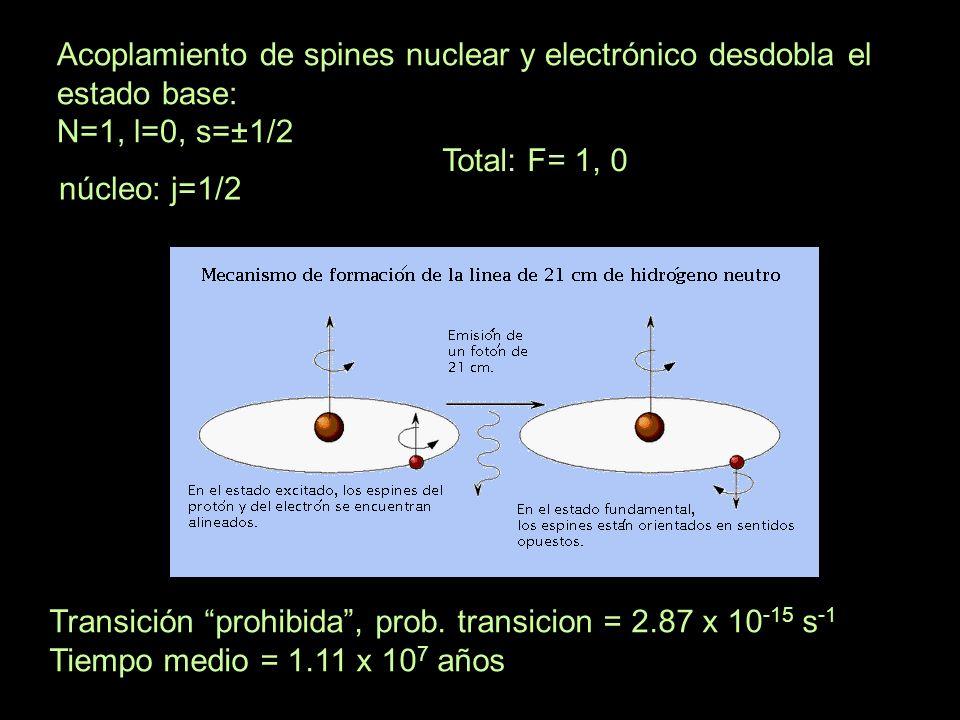 Acoplamiento de spines nuclear y electrónico desdobla el estado base:
