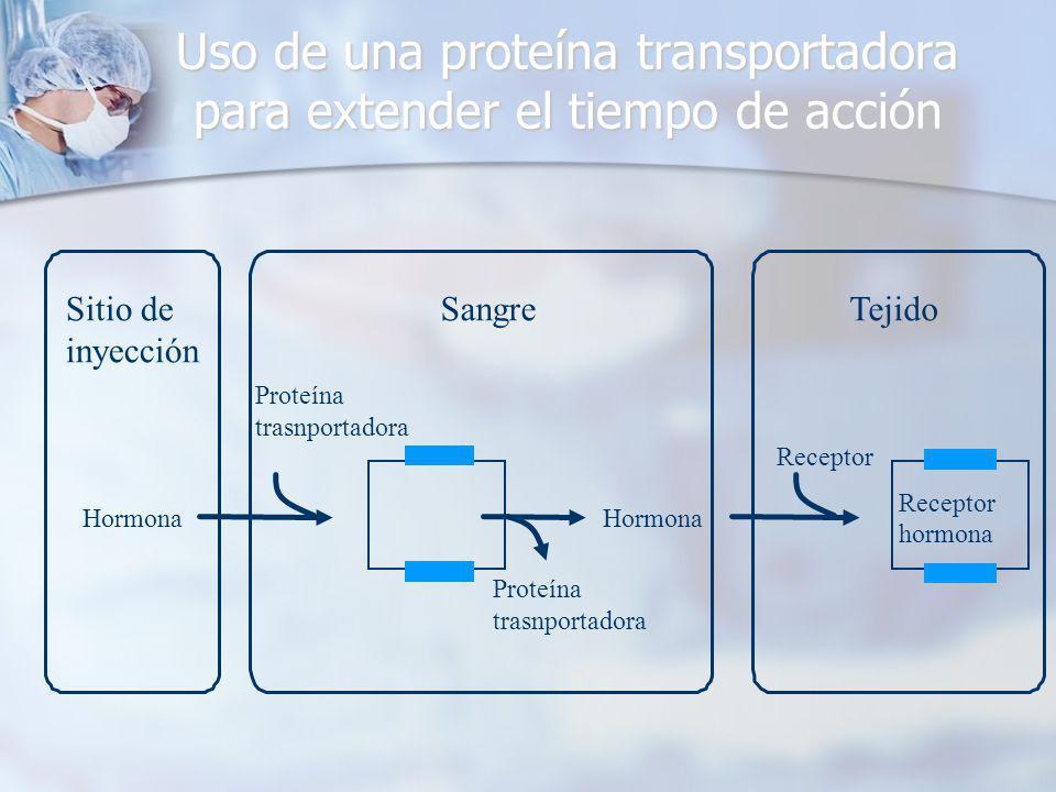 Uso de una proteína transportadora para extender el tiempo de acción