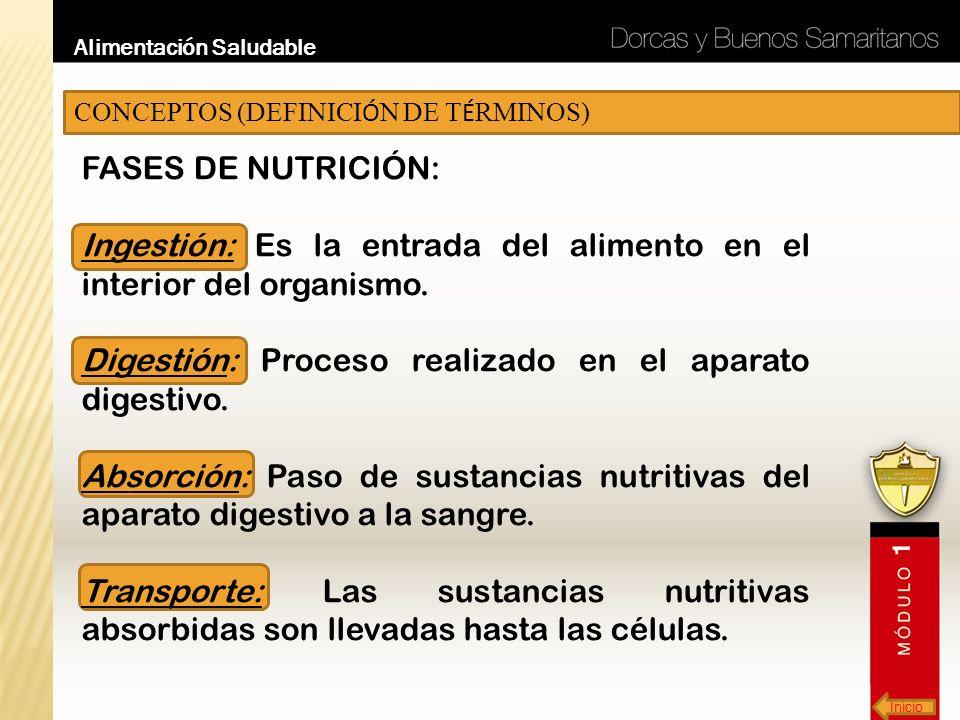 Ingestión: Es la entrada del alimento en el interior del organismo.