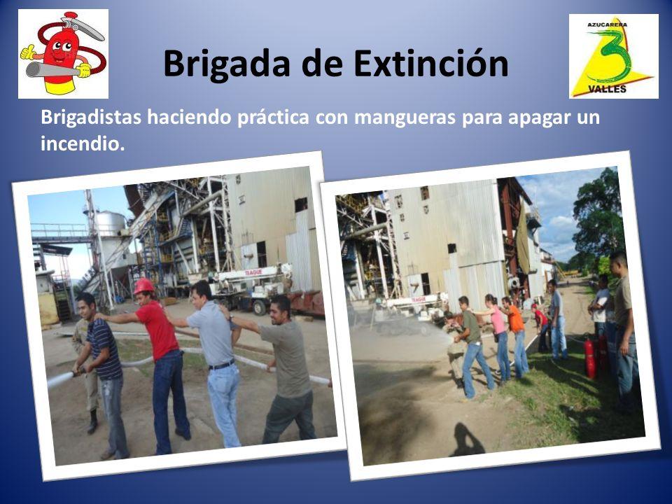 Brigada de Extinción Brigadistas haciendo práctica con mangueras para apagar un incendio.