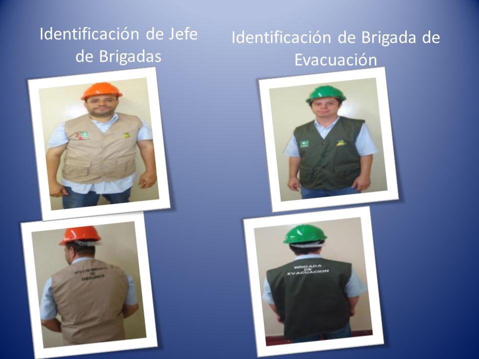 Identificación de Jefe de Brigadas