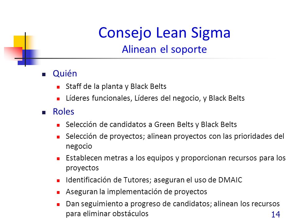 Consejo Lean Sigma Alinean el soporte