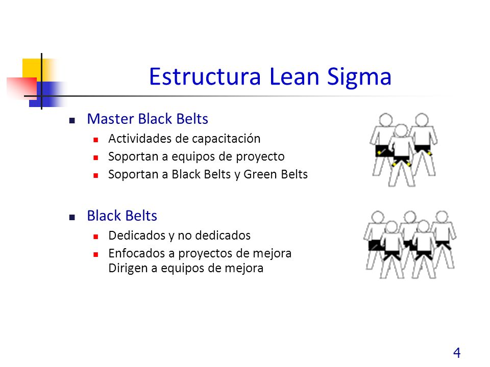 Estructura Lean Sigma Master Black Belts Black Belts