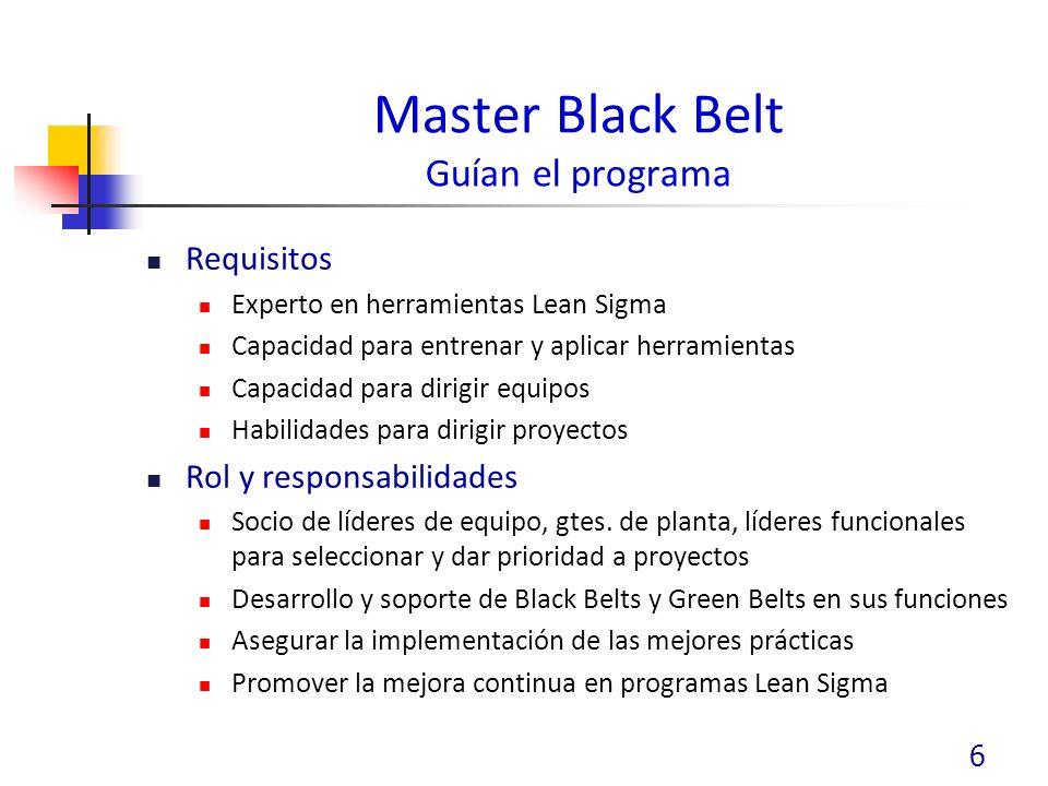 Master Black Belt Guían el programa