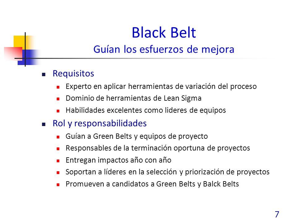 Black Belt Guían los esfuerzos de mejora