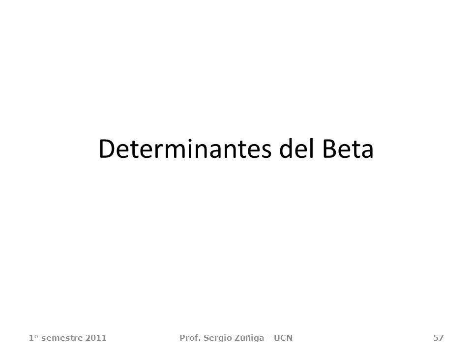 Determinantes del Beta