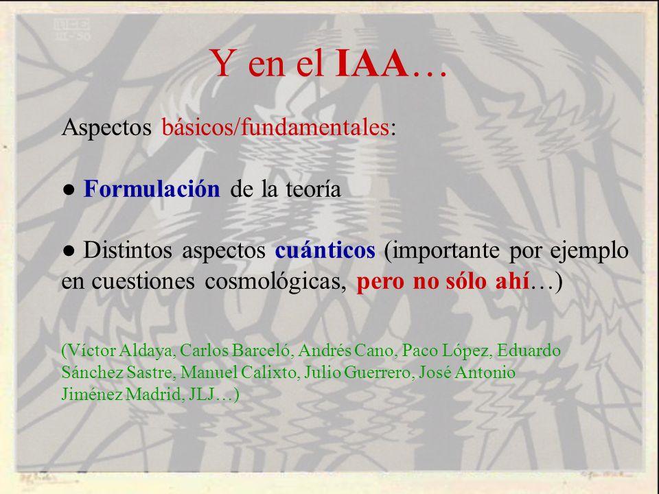 Y en el IAA… Aspectos básicos/fundamentales: