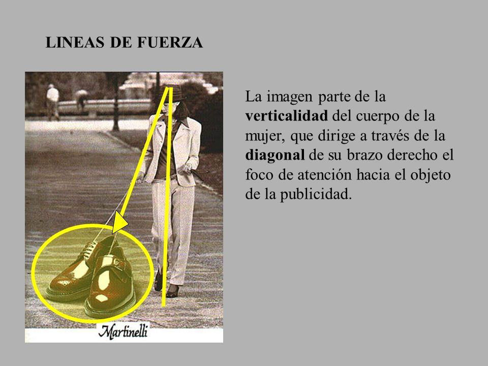 LINEAS DE FUERZA