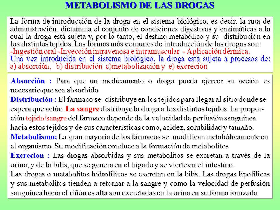 METABOLISMO DE LAS DROGAS