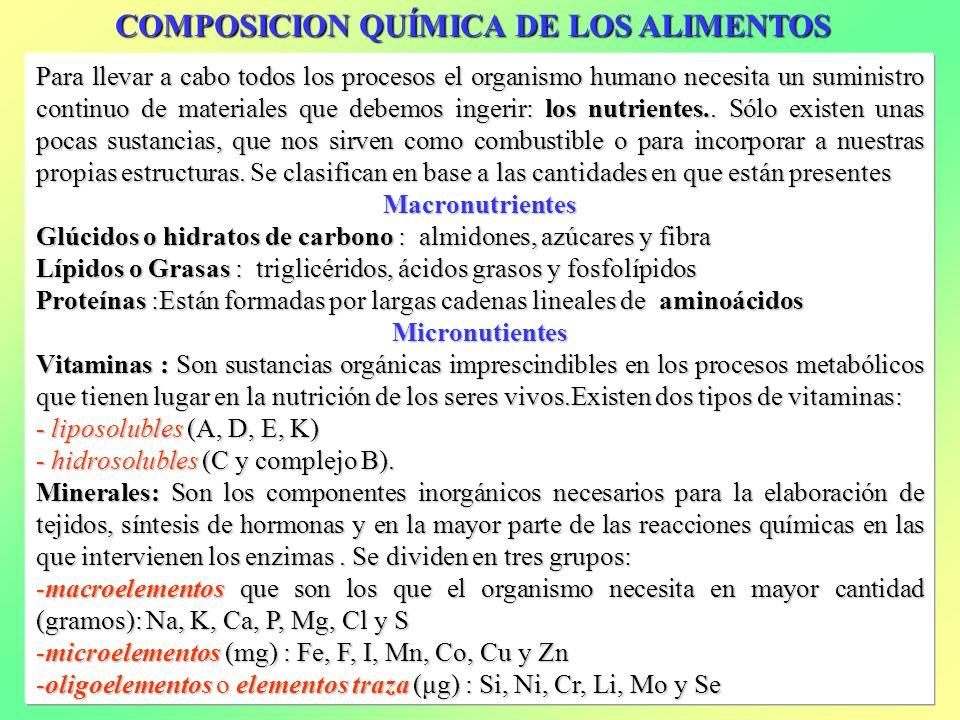 COMPOSICION QUÍMICA DE LOS ALIMENTOS