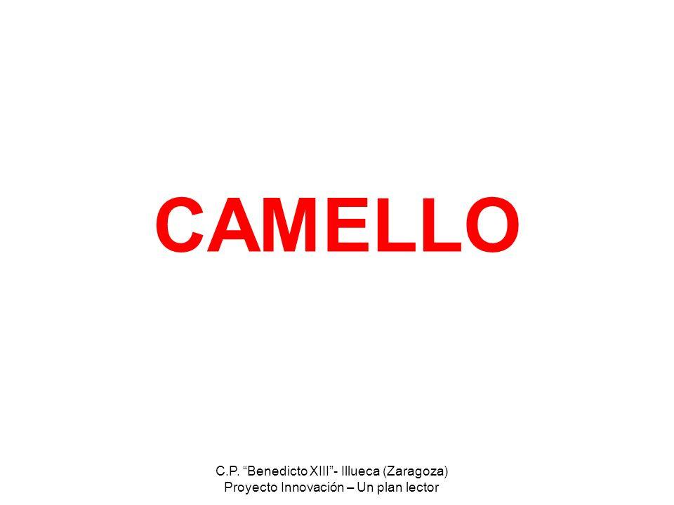 CAMELLO C.P. Benedicto XIII - Illueca (Zaragoza)