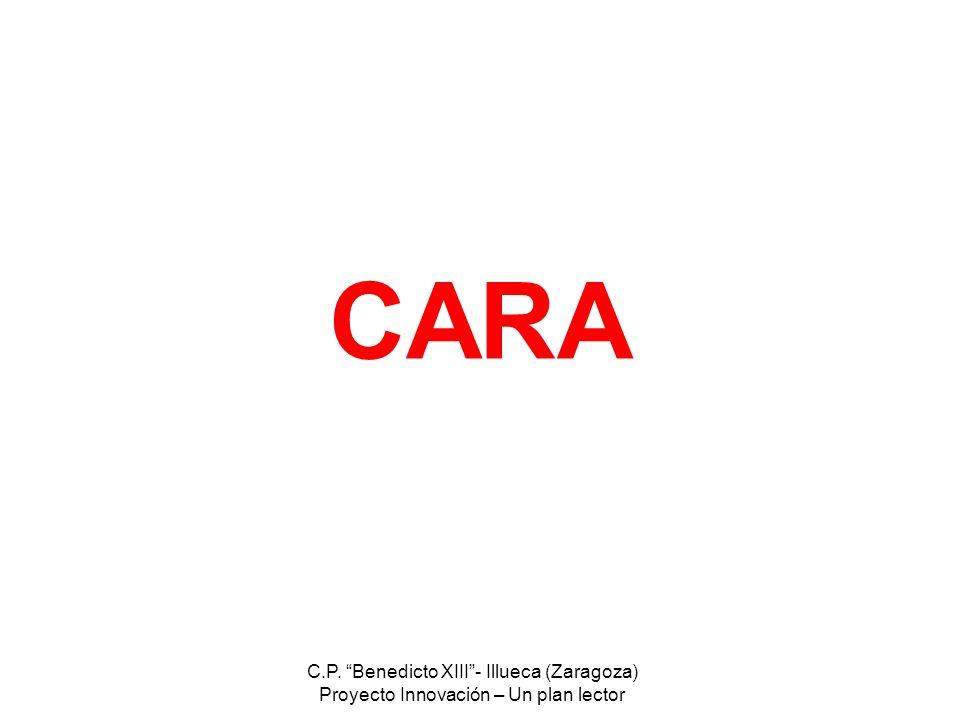 CARA C.P. Benedicto XIII - Illueca (Zaragoza)