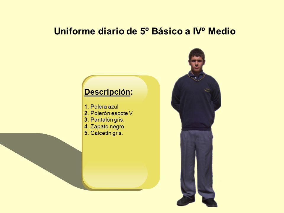 Uniforme diario de 5º Básico a IVº Medio